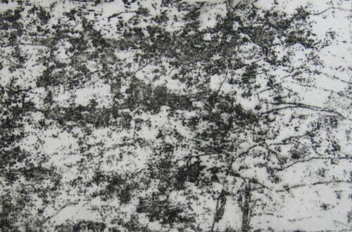 Stein mit Flechten, Radierung, 2015, 19x27.5 cm (Werk), 10x15 cm (Druck)