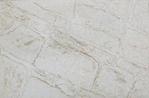 Steine, Radierung, 2015, 19x27.5 cm (Werk), 10x15 cm (Druck)