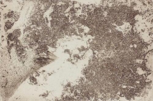 Kleiner Marder, Radierung, 2018